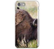 Bison and Blackbirds iPhone Case/Skin