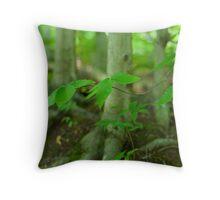 Summer in the Beech Woods Throw Pillow