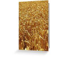 Harvest 2 - Grantham Greeting Card