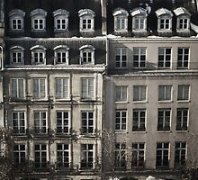 Paris' old buildings by Svitlana Synel'nyk
