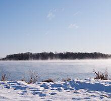 winter morning mist by Skye Hohmann