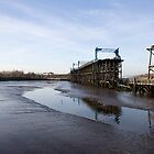 Dunston Staithes by Catherine Dipper