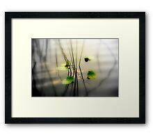 ZEN perfect Framed Print