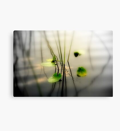 ZEN perfect Canvas Print