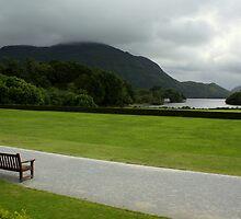 Killarney view by Esther  Moliné