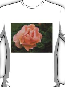 Peach Rose with Raindrops T-Shirt