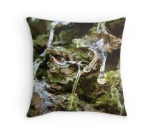 frozen tears Throw Pillow