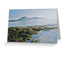 Lofots .My love Norway . Sea landscape. by Brown Sugar  . Views (329) favorited by (1) thanks friends ! Greeting Card