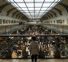 Little boy in the Museum of Natural history by Svitlana Synel'nyk