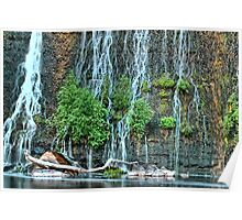 Dam Waterfall with Plants Poster
