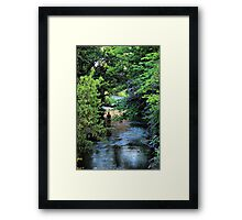 Antony Gormley in the Water of Leith Framed Print