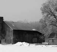 old winter barn(black and white) by wolf6249107