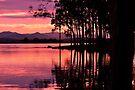 lake samsonvale, queensland, australia by gary roberts