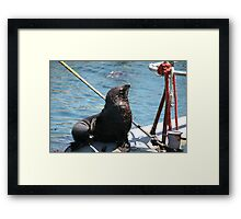 Waiting for the Salmon Framed Print