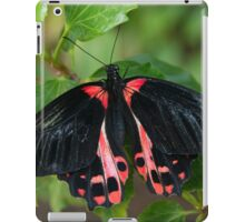 Black and Red Butterfly  iPad Case/Skin
