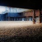 Under Brighton Pier by Karen Martin IPA