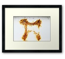 Rusty the Dog Framed Print