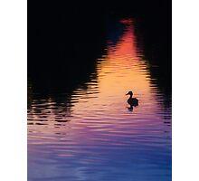 Bates Sunset Duck - 85731 Photographic Print