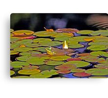Can you see me now??? Canvas Print
