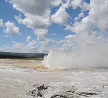 Fountain Geyser, Yellowstone National Park by Kristin Colson