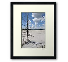 Desolate Beauty, Yellowstone National Park Framed Print