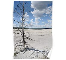 Desolate Beauty, Yellowstone National Park Poster