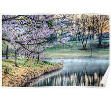 Cherry Blossom Sunrise Photo Poster