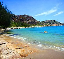 TURQUOISE SEAS, RED TREES AND GRANITE ROCKS by zimmie22