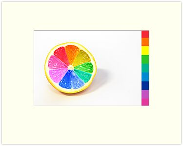 Pantone Colour Wheel by Sarah Moore