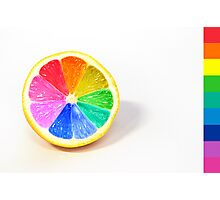 Pantone Colour Wheel Photographic Print