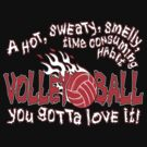 You Gotta Love It - Volleyball by gregbukovatz