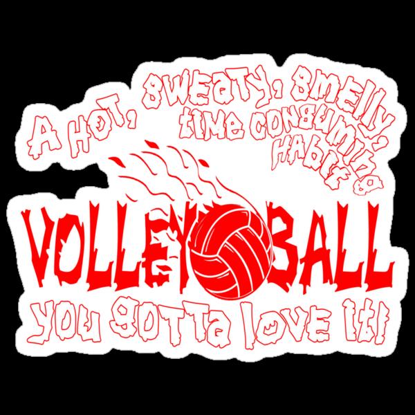 You Gotta Love It - Volleyball by gregbukovatz