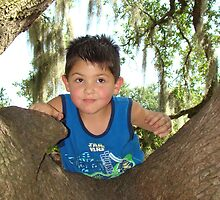 Joshua Jr. Playing On An Oak Tree by Wanda Raines