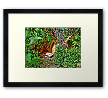 Entrance to Fairyland Framed Print