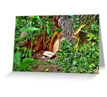 Entrance to Fairyland Greeting Card