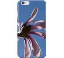 Pink Spring - Blue Sky and Magnolia Blossoms iPhone Case/Skin