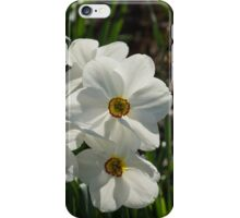 Sparkling, Fabulous White Narcissus with a Touch of Red iPhone Case/Skin