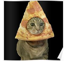 Cat with Pizza Head Poster