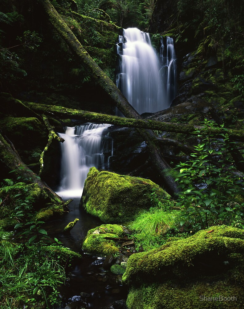 Great Otways National Park - Yanathan Falls by ShaneBooth