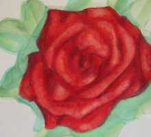 Rose Study 1967 by eruthart