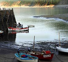 Clovelly Harbour by saxonfenken
