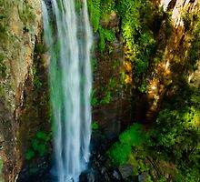 Queen Mary Falls by Lisa Kennedy
