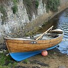 Rionnag Moored in Lews Castle Grounds, Stornoway by kathrynsgallery
