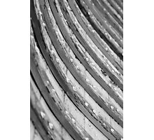 Spare Ribs Photographic Print