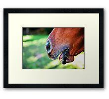Remnants... Framed Print