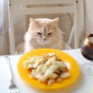 cat sitting at the laid table by Iuliia Dumnova