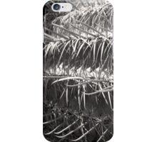 Barrel Maze iPhone Case/Skin
