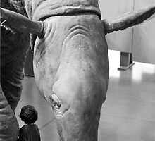 Aquarium Golden Gate Park San Francisco USA by Sandy Taylor