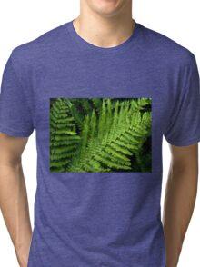 Fabulous Ferns Tri-blend T-Shirt