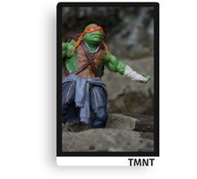 Michelangelo -- TMNT  Canvas Print